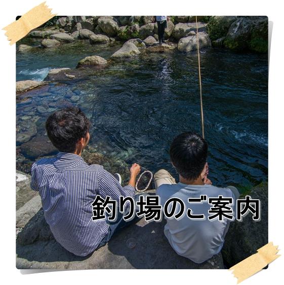釣り場のご案内